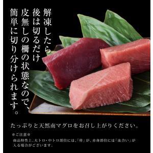 まぐろ マグロ 鮪 天然 南マグロ インドマグロ 大トロ 中トロ 赤身 合計 1kg 冷凍 同梱不可 送料無料|tsukiji-ichiba2|07