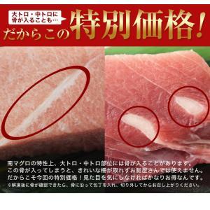 まぐろ マグロ 鮪 天然 南マグロ インドマグロ 大トロ 中トロ 赤身 合計 1kg 冷凍 同梱不可 送料無料|tsukiji-ichiba2|08
