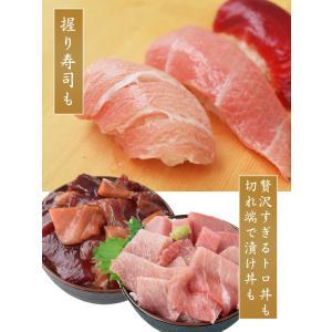 まぐろ マグロ 鮪 天然 南マグロ インドマグロ 大トロ 中トロ 赤身 合計 1kg 冷凍 同梱不可 送料無料|tsukiji-ichiba2|09