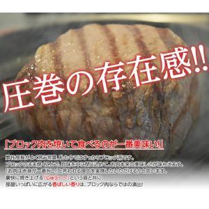 肉 牛肉 黒毛和牛 内もも ブロック 300g以上 牛肉 もも肉 焼き肉 ご飯 お酒 ビール 冷凍食品 夜食 夕食 簡単調理 冷凍同梱可能|tsukiji-ichiba2|03