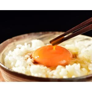 卵 たまご 田子たまご村  緑の一番星  6個×3 計18個 常温 送料無料 同梱不可|tsukiji-ichiba2