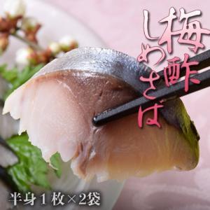 梅酢 しめさば 半身 1枚×2袋(約6人前) しめ鯖 シメサバ おつまみ 酒の肴 日本酒 ビール 冷凍 同梱可能|tsukiji-ichiba2