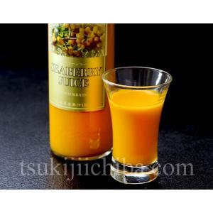 『シーベリー(サジー)100%果汁』 北海道産 希釈タイプ無糖 300ml×3本 ○|tsukiji-ichiba2