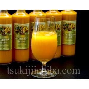 『シーベリー(サジー)100%果汁』 北海道産 希釈タイプ無糖 300ml×6本 ○|tsukiji-ichiba2