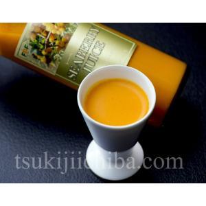 『シーベリー(サジー)100%果汁』 北海道産 希釈タイプ無糖 300ml×9本 ○|tsukiji-ichiba2