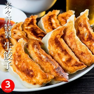 餃子 ぎょうざ 来々軒特製 生餃子 1パック15個(約600g x 3) ラー油付き 冷凍 ギョーザ 送料無料 tsukiji-ichiba2