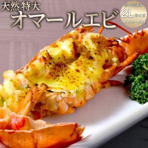 海老 エビ えび 天然オマールエビ ボイル済 特大2Lサイズ(400〜450g) 冷凍|tsukiji-ichiba2