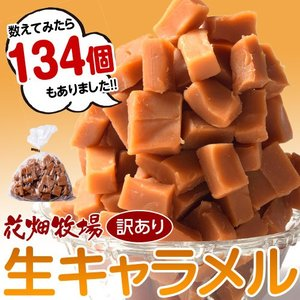 キャラメル 生 花畑牧場 生キャラメル 訳あり お徳用500g スイーツ キャラメル お菓子 ギフト おやつ お礼 お取り寄せ お土産 冷凍|tsukiji-ichiba2