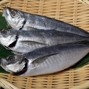 アジ 長崎県産 旬アジ [ときあじ] 一夜干し 干物 魚 さかな 80g×3尾×1袋 冷凍 冷凍同梱可 tsukiji-ichiba2 05