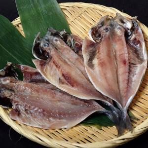 アジ 長崎県産 旬アジ [ときあじ] 一夜干し 干物 魚 さかな 80g×3尾×1袋 冷凍 冷凍同梱可 tsukiji-ichiba2 06