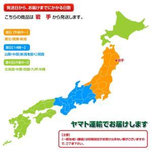 バター なかほら牧場 グラスフェッドバター 岩手県産 100g×10個セット 産地直送 冷蔵|tsukiji-ichiba2|06