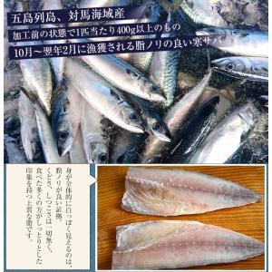 魚 さば サバ 鯖 送料無料 長崎県産 旬サバ ときさば 旬さば 塩さば 1袋2枚入り 約220g×3P 干物 焼き魚 おかず 冷凍 同梱不可|tsukiji-ichiba2|03