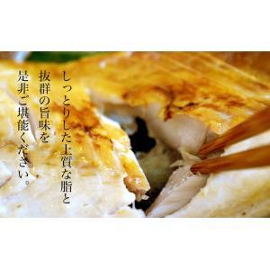 魚 さば サバ 鯖 送料無料 長崎県産 旬サバ ときさば 旬さば 塩さば 1袋2枚入り 約220g×3P 干物 焼き魚 おかず 冷凍 同梱不可|tsukiji-ichiba2|06