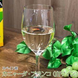 ハウスワイン カニャーダブランコ 白ワイン 3L×4パック 業務用ケース ワイン ボックス BOX イエノミ 家飲み 送料無料|tsukiji-ichiba2