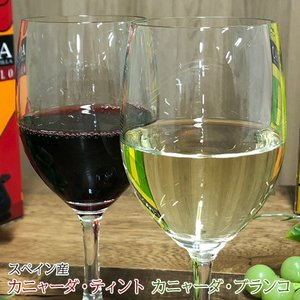 ハウスワイン 赤白2種 カニャーダティント/カニャーダブランコ 各3L 計2箱 ワイン ボックス BOX イエノミ 家飲み 送料無料|tsukiji-ichiba2