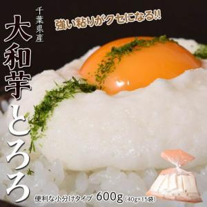 芋 とろろ 千葉県産大和芋600g(40g×15袋入り) いも やまといも ご飯 とろろそば 冷凍 tsukiji-ichiba2