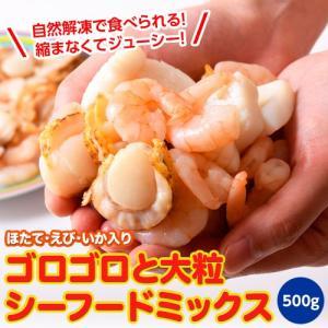 魚介 シーフードミックス さらりとシーフード いか ほたて えび 入り 500g 冷凍同梱可能|tsukiji-ichiba2