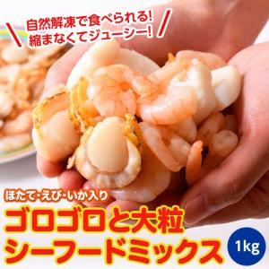 魚介 シーフードミックス さらりとシーフード いか ほたて えび 入り 1キロ 500g×2P 冷凍同梱可能|tsukiji-ichiba2