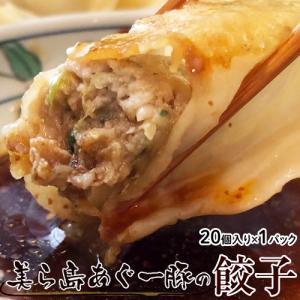 餃子 ぎょうざ 美ら島あぐー豚100%使用 あぐー豚の餃子 20個入り(480g) 贈り物 おつまみ お弁当 おかず 冷凍食品 冷凍同梱可能|tsukiji-ichiba2