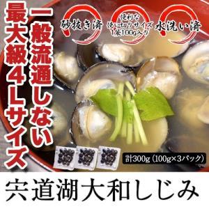 しじみ シジミ 蜆 宍道湖産 大和しじみ 100g×3袋 計300g 大粒 砂抜き済 水洗い済 冷凍同梱可能|tsukiji-ichiba2