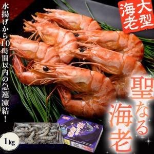 ギフト  えび 海老 エビ お刺身でも食べられる 聖なる海老 1kg 31〜40尾入 有頭海老 おせち 縁起物 贈り物 冷凍 同梱不可 送料無料|tsukiji-ichiba2