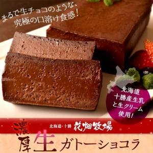 ケーキ チョコレート 花畑牧場 濃厚 生 ガトーショコラ 480g×2本セット 業務用 プレゼント おやつ チョコケーキ 冷凍 同梱可能|tsukiji-ichiba2