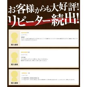 お中元 夏 ギフト スイーツ 濃厚 ガトーショコラ 270g×3本 クーベルチュール チョコレート ケーキ 洋菓子 お菓子 プレゼント おやつ お土産 冷凍 送料無料|tsukiji-ichiba2|04