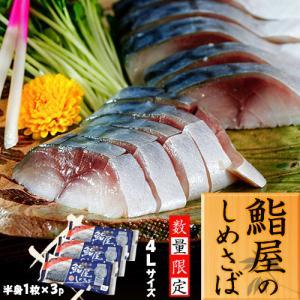 さば サバ 鯖 国産真サバ使用! 鮨屋のしめさば 4Lサイズ 半身1枚×3P 冷凍 送料無料|tsukiji-ichiba2