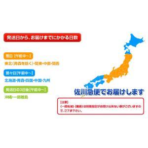 さば サバ 鯖 国産真サバ使用! 鮨屋のしめさば 4Lサイズ 半身1枚×3P 冷凍 送料無料|tsukiji-ichiba2|14