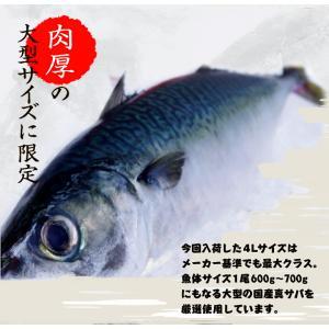 さば サバ 鯖 国産真サバ使用! 鮨屋のしめさば 4Lサイズ 半身1枚×3P 冷凍 送料無料|tsukiji-ichiba2|03