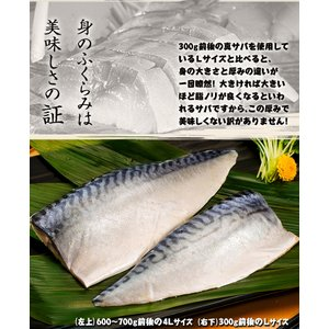 さば サバ 鯖 国産真サバ使用! 鮨屋のしめさば 4Lサイズ 半身1枚×3P 冷凍 送料無料|tsukiji-ichiba2|04