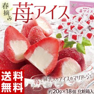 母の日 2021 ギフト 苺 いちご イチゴ アイス あいす 春摘み苺アイス 約20g×18個  冷凍 送料無料 同梱不可|tsukiji-ichiba2
