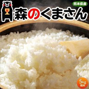 《送料無料》熊本県産 『森のくまさん』 白米 5kg ※常温 【同梱不可】○|tsukiji-ichiba2