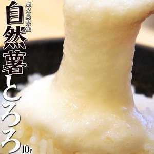 セール とろろ 国産 鹿児島県産 自然薯[じねんじょ]とろろ 40g×10パックセット [冷凍同梱可能]|tsukiji-ichiba2