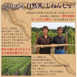 セール とろろ 国産 鹿児島県産 自然薯[じねんじょ]とろろ 40g×10パックセット [冷凍同梱可能]|tsukiji-ichiba2|05