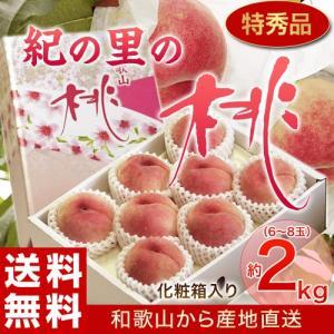 もも 桃 モモ お中元 御中元 ギフト 和歌山県産 紀の里の桃 特秀品 約2kg (6〜8玉) 化粧箱 送料無料 産地直送|tsukiji-ichiba2