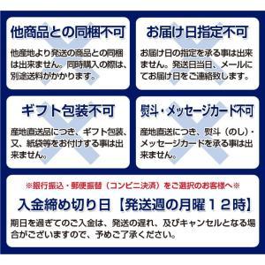 山梨県産 JAふえふき 藤稔 超大房3房 約2kg 化粧箱 ※冷蔵 送料無料|tsukiji-ichiba2|10