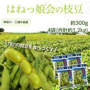 神奈川県 三浦半島産  はねっ娘会の枝豆  約300g×4袋(合計約1.2kg) 冷蔵|tsukiji-ichiba2