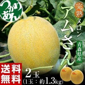 青森県産 つがりあんメロン アムさん 秀品 2玉 (1玉 約1.3kg ) 送料無料|tsukiji-ichiba2