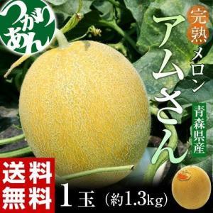 青森県産 つがりあんメロン アムさん 秀品 1玉 約1.3kg 送料無料 常温 産地直送|tsukiji-ichiba2