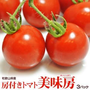 トマト 野菜 和歌山県産 特別栽培農産物 房付き「美味房(おいしんぼう)トマト」 1パック 約200g×3パック|tsukiji-ichiba2