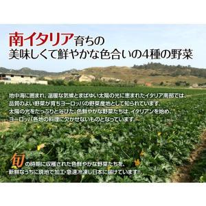 野菜ミックス 南イタリア産 [グリル野菜ミックス] (ズッキーニ・黄ピーマン・赤ピーマン・ナス) 大容量 1キロ [500g×2袋] 冷凍同梱可能|tsukiji-ichiba2|04