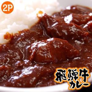 カレー ギフト 飛騨牛カレー 200g×2袋 カレールー カレーライス ごはんのおとも ご飯のお供 冷凍 同梱OK|tsukiji-ichiba2