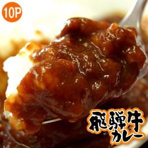 カレー ギフト 送料無料 飛騨牛カレー 200g×10袋 カレールー カレーライス ご飯のお供 ごはんのおとも 冷凍 同梱不可|tsukiji-ichiba2