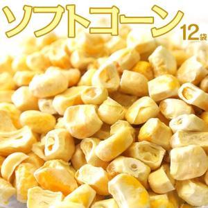 コーン とうもろこし トウモロコシ 送料無料 北海道 取り寄せ 美瑛産とうもろこしのフリーズドライ ソフトコーン 12袋 (1袋あたり25g) 常温|tsukiji-ichiba2