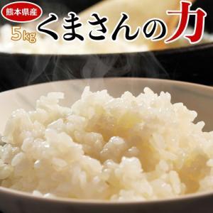 《送料無料》熊本県産 『くまさんの力』 白米 5kg ※常温【同梱不可】○|tsukiji-ichiba2