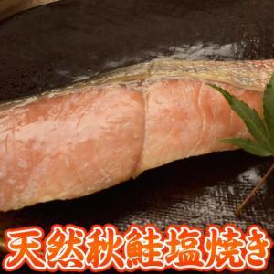 鮭 温めるだけ 北海道産 天然 秋鮭の塩焼き 個包装 大容量 20切れ 冷凍 冷凍同梱可能|tsukiji-ichiba2