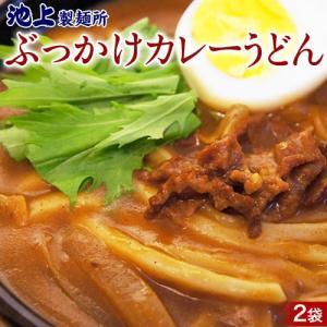 ポイント消化 ぶっかけ カレーうどん 3食分×2セット 送料無料 るみおばあちゃん 池上製麺所 生うどん 讃岐 ゆうパケット代引不可同梱不可|tsukiji-ichiba2
