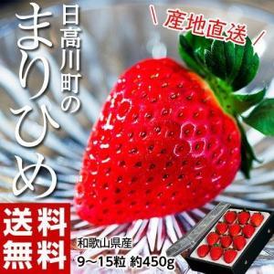 送料無料 いちご 和歌山県産 日高川町の「まりひめ」 約450g 9〜15粒入|tsukiji-ichiba2