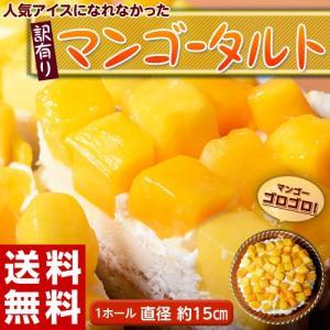 ≪送料無料≫人気アイスになれなかったマンゴーたっぷり使用!『...